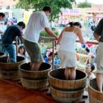 festival-del-vino-GrapeFest