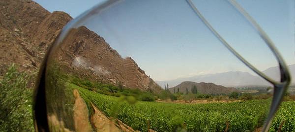 instrumento-vitivinicola-dinamizar-economias-regionales_CLAIMA20140527_0158_27