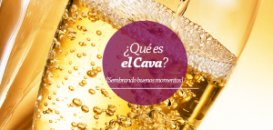 pregunta_9_vinos
